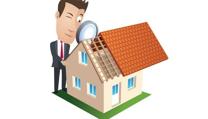 Building and Pest Inspection: Why Is It Necessary?