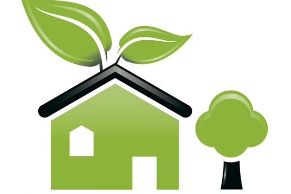 Natural and Organic Pest Control Keeping You and Your Family Safe