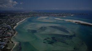 Pest Control Sunshine Coast