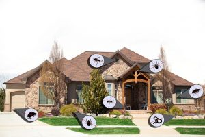 Why You Need Residential Pest Control