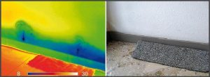 Explained: Termite Thermal Imaging