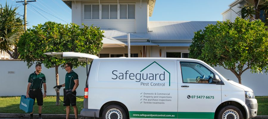 Termite Reticulation System, Sunshine Coast