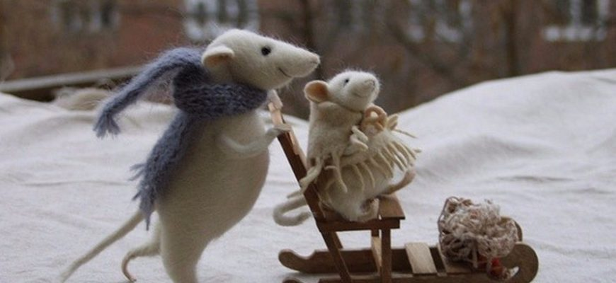 Winter is Coming! Get Ready to Spot Mice in Your House