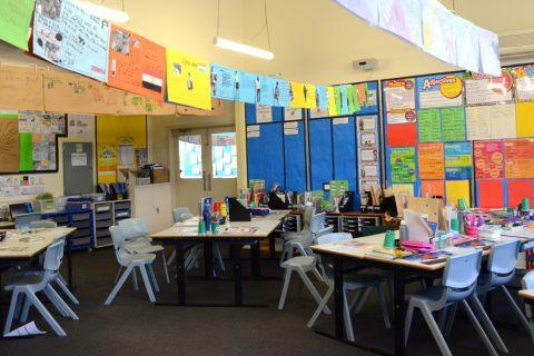 Pest Control for Schools, Sunshine Coast