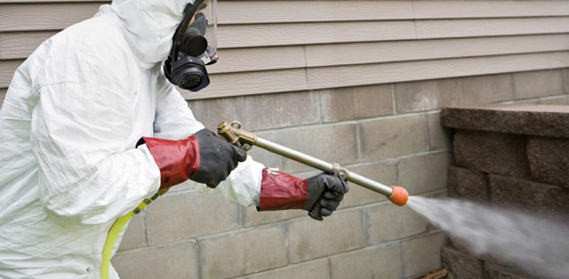 Termite Damage Can Be Prevented, Here's how: