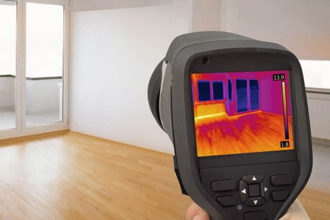 Thermal Imaging Pest Control, Sunshine Coast
