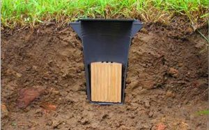 Termite Baiting Systems, Termite Control, Termite Baits, Termite Control, Termite Barrier, Termite Treatment, Sunshine Coast