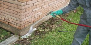 Termite Treatment, Termite Control, Termite Barrier, Sunshine Coast