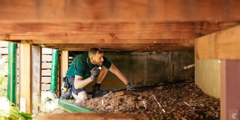 termite treatment cost