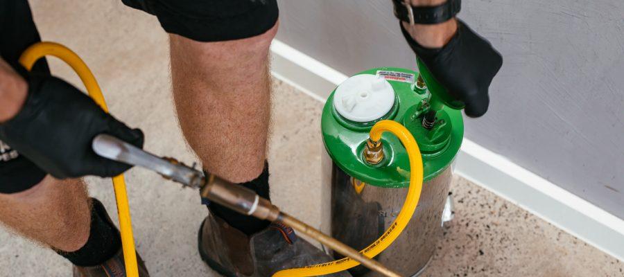 DIY Termite Treatment vs. Professional Termite Control
