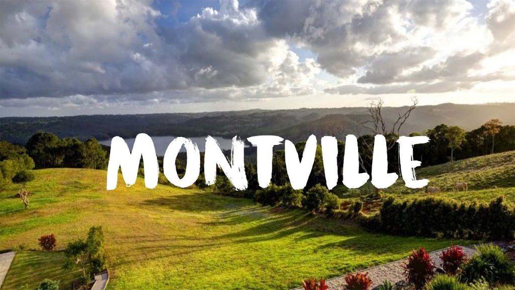 Pest Control Montville