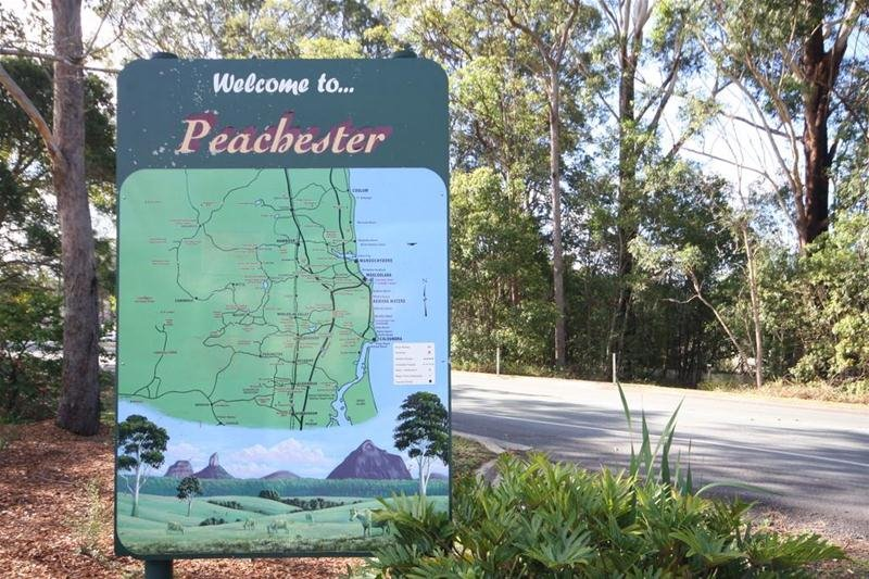 Pest Control Pacific Paradise