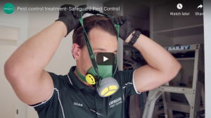 Pest Service– How pest control is done