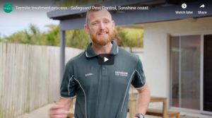 Termite treatment – how termite treatment is installed?