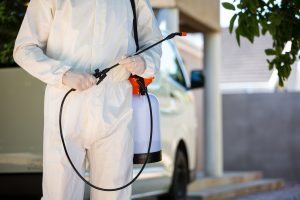 How to Make Sure Your Pest Control Specialist Will Do a Good Job