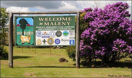 Pest Control Maleny